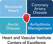 The Heart and Vascular Institute's four centers of excellence